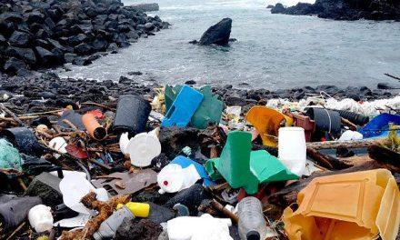 Campanha da ONU de limpeza dos mares é lançada no Brasil