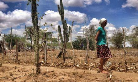 Mais um município baiano em estado de emergência por causa da seca