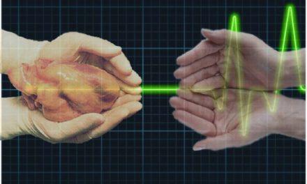 Número de transplantes de órgãos cai no país