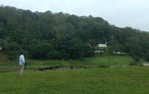 Campo de futebol onde helicóptero fez o pouso