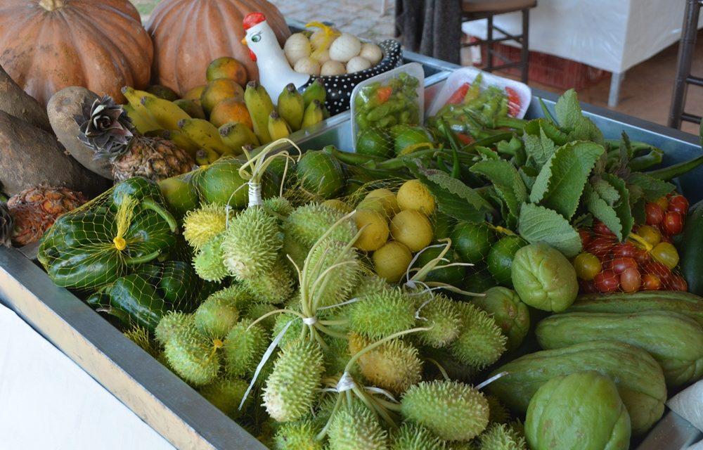 Produtos da agricultura familiar são comercializados na Exporural