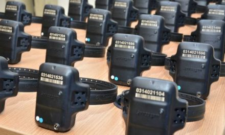 Tornozeleiras eletrônicas chegam à Bahia nesta quarta, 20