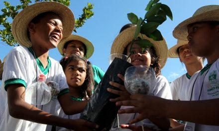 Simões Filho: crianças 'plantam' cápsula do tempo em quilombo
