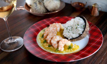 Festival gastronômico leva milhares de visitantes à Praia do Forte