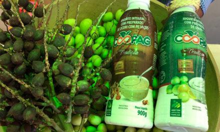 Cooperativa lança iogurte de licuri no Bahia Rural Contemporânea na Fenagro