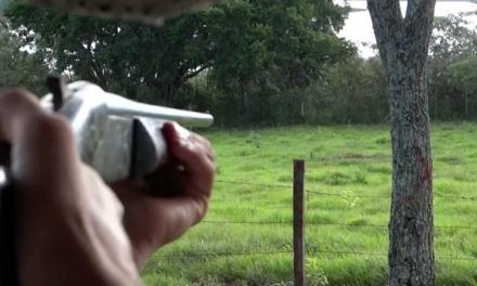 Comissão do Senado autoriza posse de arma de fogo por moradores da zona rural