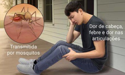 Carnaval no Rio: governo alerta para transmissão de chikungunya