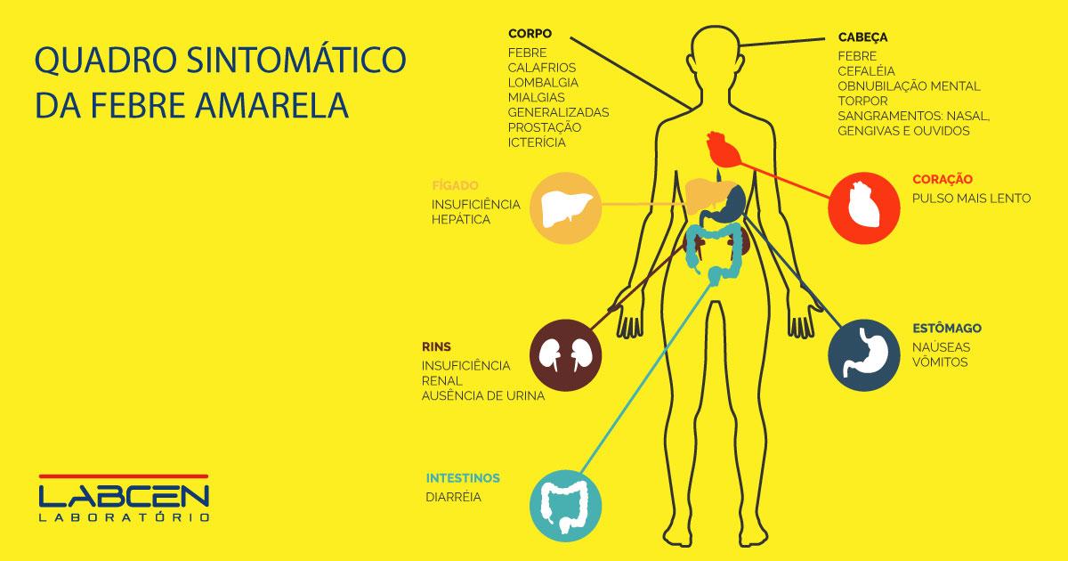 Morre com febre amarela em hospital de Salvador homem que veio de São Paulo