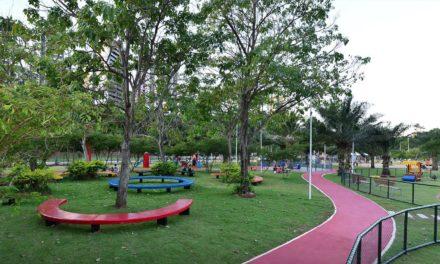 Fim de semana no Parque da Cidade tem atrações como FitDance e feira orgânica
