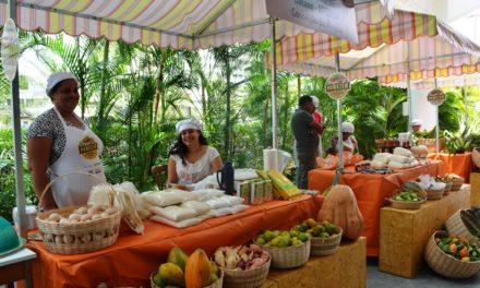 Produtos da agricultura familiar são uma opção saudável para a alimentação no Carnaval