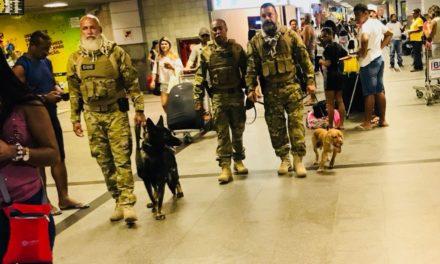 Cães da COE ampliam ações e proximidade com população no Aeroporto de Salvador