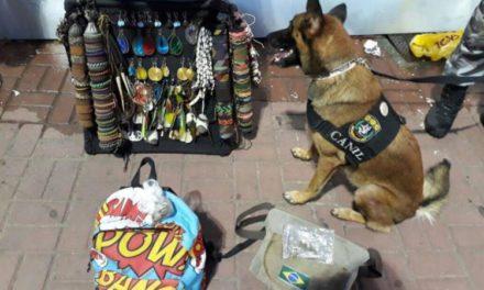 Ambulantes com drogas são flagrados com ajuda de cadela da PM