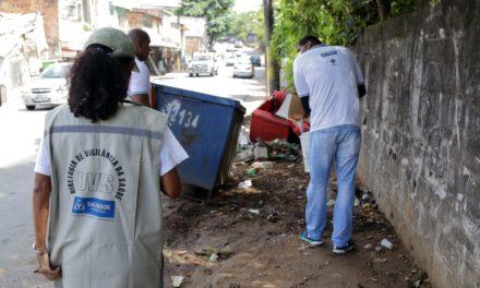 Ações de combate a roedores são intensificadas em Salvador