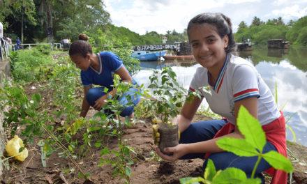 Escolas têm até 14 de abril para a etapa preparatória da III Conferência Infantojuvenil pelo Meio Ambiente