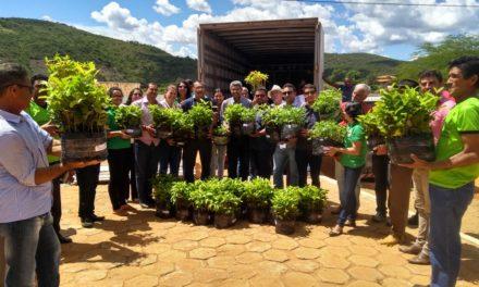 Governo entrega ponte e mudas frutíferas e essências florestais no município de Urandi