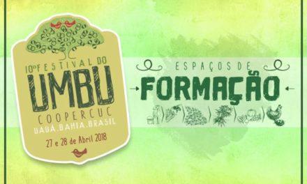 Festival do Umbu começa nessa sexta com entrega de mudas para agricultura familiar