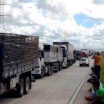 Liminar autoriza uso das Forças Armadas para retirar caminhoneiros da BR-101