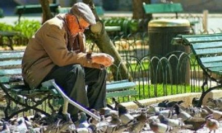 Prefeitura vai multar em R$ 200 quem alimentar pombos em São Paulo