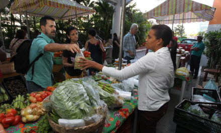 Feira leva produtos agroecológicos para shopping e outros locais de Salvador
