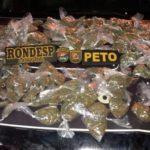 Polícia desmonta centro de distribuição de drogas em Castelo Branco
