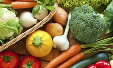 Feiras Agroecológicas são alternativa para alimentação saudável em Salvador