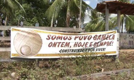 Brasil lidera ranking de relatório de ONG com 57 mortes de ativistas ambientais