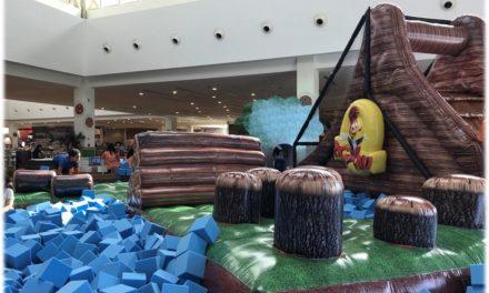 Circuito de Aventuras do Pica-Pau e mais atrações de lazer no Salvador Norte Shopping