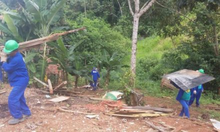 Prefeitura remove 61 demarcações de terra ilegais na Pedra de Xangô