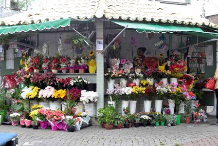 Codecon fiscaliza floriculturas no início da Primavera