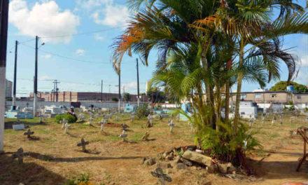 Cemitérios municipais recebem manutenção para Dia de Finados