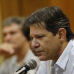 Para Haddad, instituições não estão reagindo a ameças à democracia